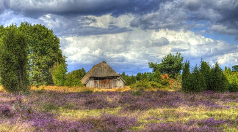 heather heath